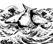 Whales — Stock Photo