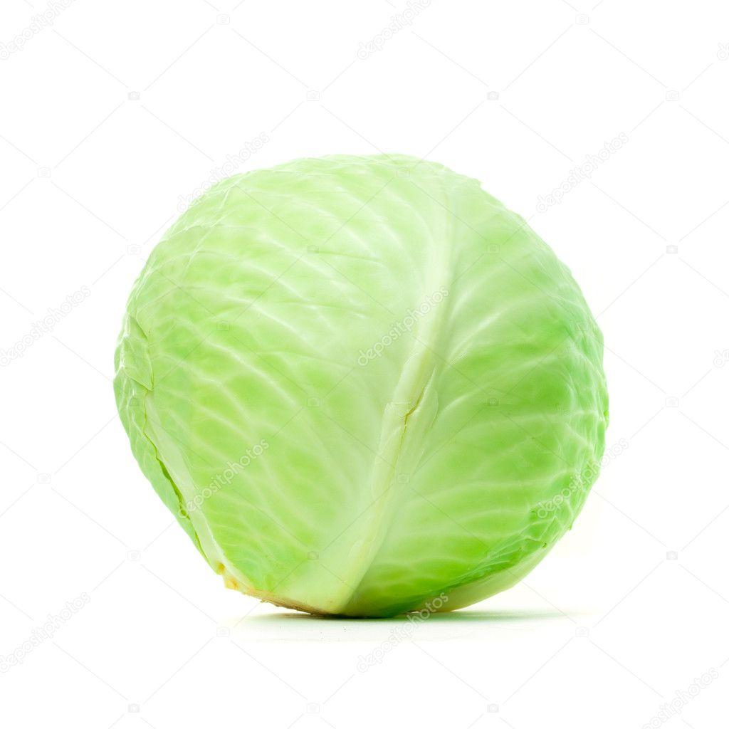 картинка кочана капусты для детей