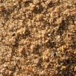 Stock Photo: River sand