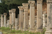 Columns in ancient Ephesus, Turkey — Stock Photo