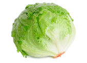 Cabbage lettuce — Foto de Stock
