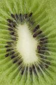 Close up of kiwi — Stock Photo