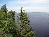 Coasts of river Volga — Stock Photo