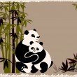 Pandas family in the bamboo forest — Stock Vector #1715641