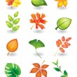 Vector  leaves — Stock Vector