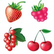 Set of berries objects — Stock Vector