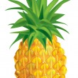 Pineapple — Stockvector #1716885