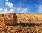 Bir gün batımı çim yığınları — Stok fotoğraf