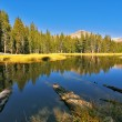 Beautiful lake in Josemite park — Stock Photo #2575833