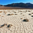 The cracked ground in desert — Stock Photo