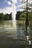 Fountain in city park — Stock fotografie