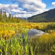 Fine autumn in Northern Canada — Stock Photo