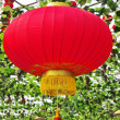 Stock Photo: Red lanterns Chin