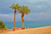 Picturesque beach — Stock Photo