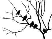 Silhouette starling on branch tree — Stock Photo