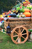 Cart with vegetable — Stock Photo