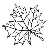 Silhouette of the maple leaf — Stock Photo