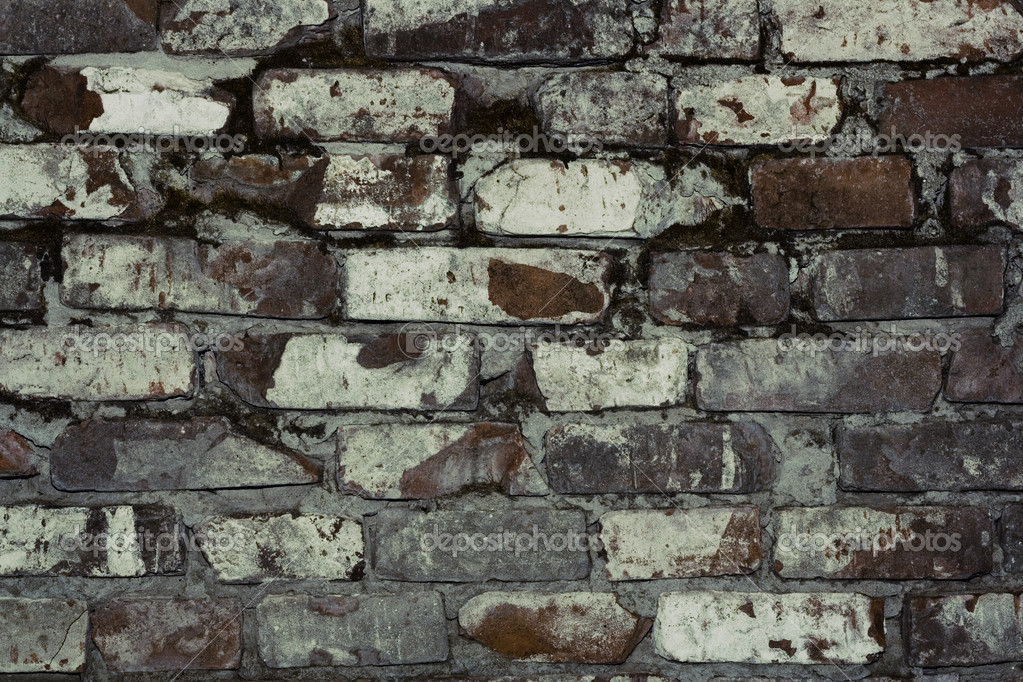 Brick wall close up background — Stock Photo #1238462