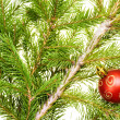 Christmas decoration — Stock Photo #1243097