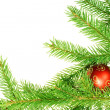 Christmas decoration — Stock Photo #1243112