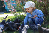 A girl feeds pigeons. — Stock Photo