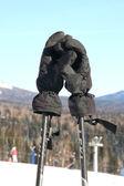 Luvas de montanha-esquiador. — Fotografia Stock