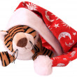 New-year tiger cub. — Stock Photo