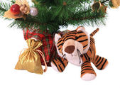 New-year tiger cub with gift. — Stock Photo
