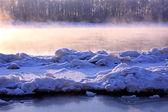 Paisagem de inverno. respiração do rio — Fotografia Stock