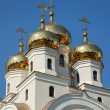 Stock Photo: Church Domes