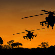 Helicopters — Stock Photo #1230746
