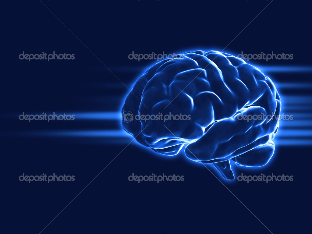 Human brain — Stock Photo #1230046