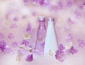 Beautiful perfume background — Stock Photo