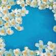 White jasmin flowers in blue water - Foto Stock