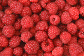 Appetizing raspberry background — Stock Photo