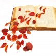 Stock Photo: Autumn leaves on vintage book