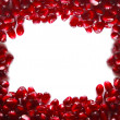 Pomegranate frame — Stock Photo