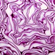 Red Cabbage macro — Stock Photo