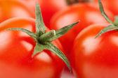Fresh Cherry Tomatoes macro — Stock Photo