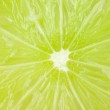 Macro food collection - Lime texture — Stock Photo