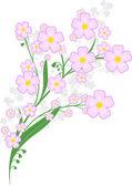 Филиал сиреневые цветы — Cтоковый вектор