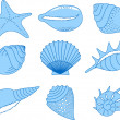 The collection of the cockleshells - Stock Vector