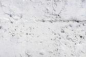 Pared blanca — Foto de Stock