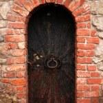 Old metal door background — Stock Photo #1236039
