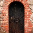 Old metal door background — Stock Photo