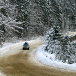 Heavy snow on the road - Stock Photo