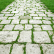 Stone walkway on a grassy field — Stock Photo