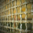 Old grate background — Stock Photo