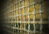 Old grate background — Stockfoto
