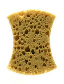 Kitchen sponge — Stock Photo